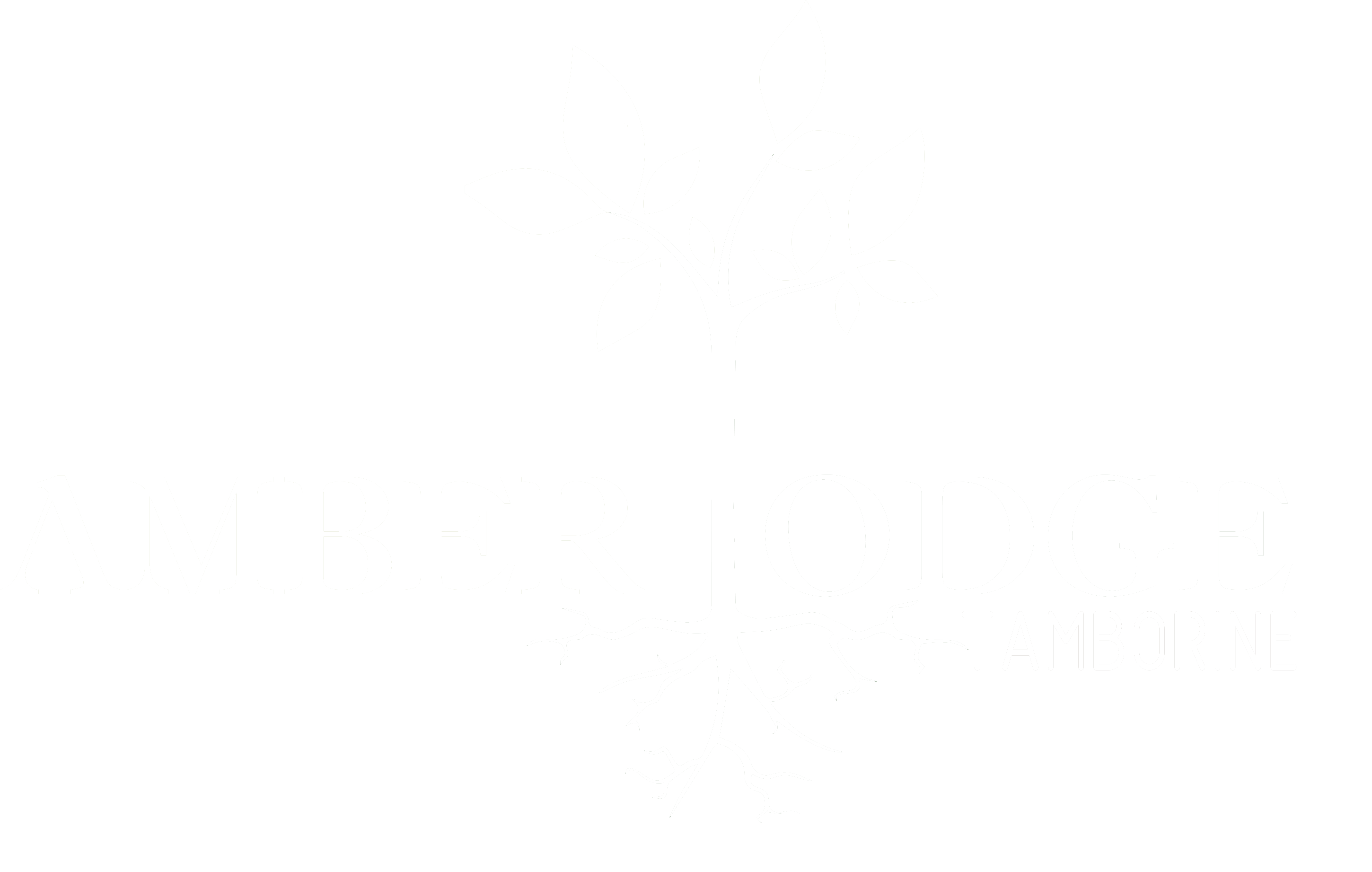 Amber Lodge Tamborine